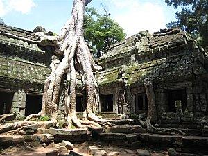 Siam-Reap-et-Angkor-Cambodge_6822.jpg
