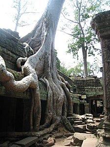 Siam-Reap-et-Angkor-Cambodge_6841.jpg