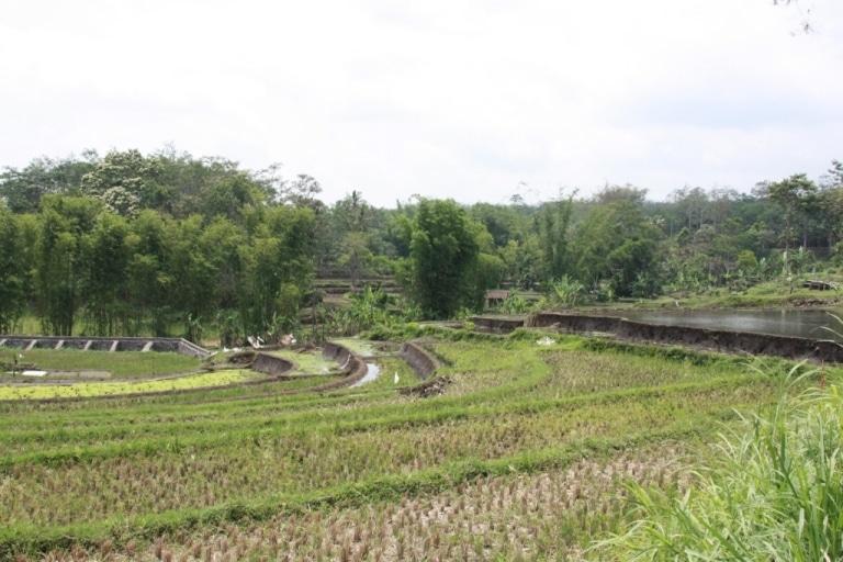 Autour de Malang