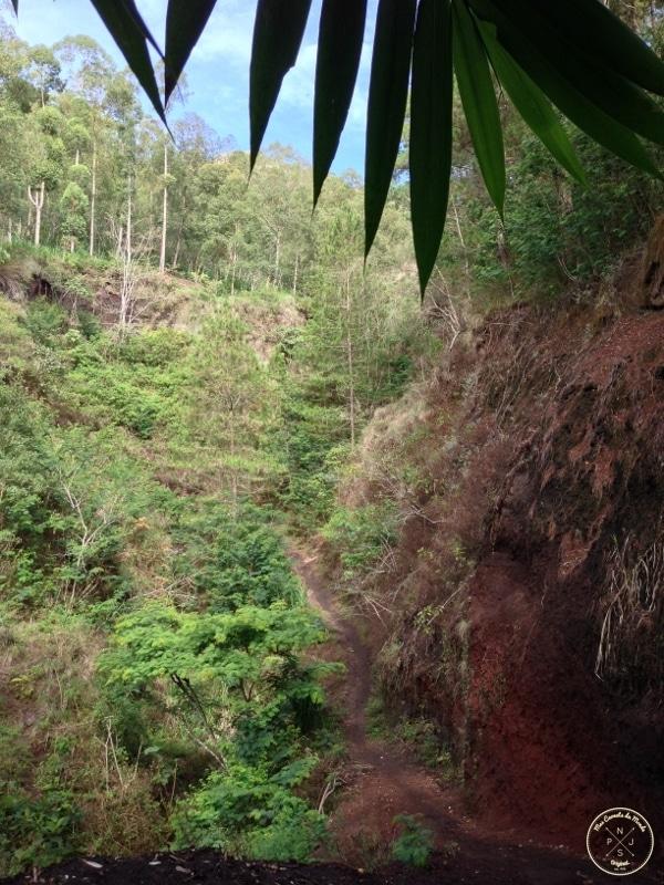 Mont Batur (21)