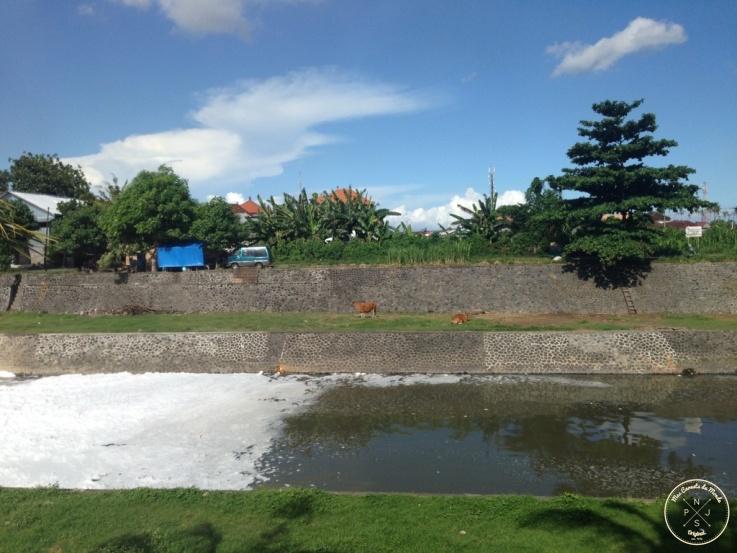 riviere a Denpasar