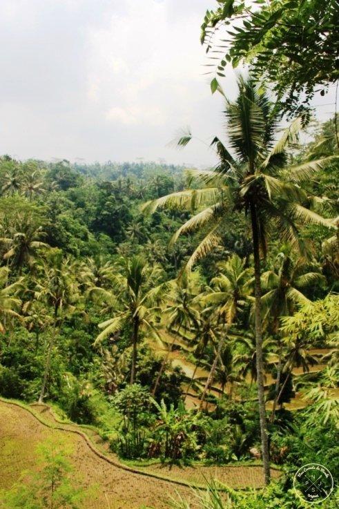 Gunung Kawi 2