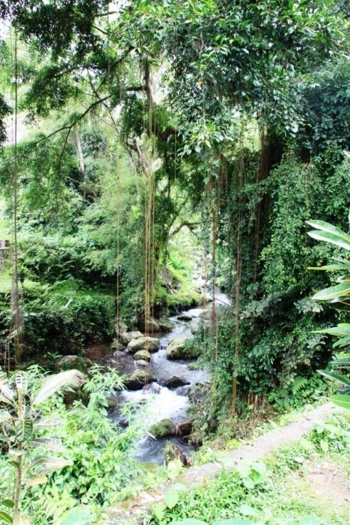 Gunung Kawi 20