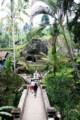 Gunung Kawi à Bali : pont sous les palmiers et Passage de la Rivière