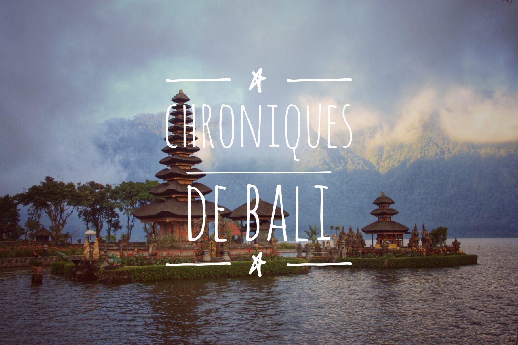 Carnets du Monde - Bali