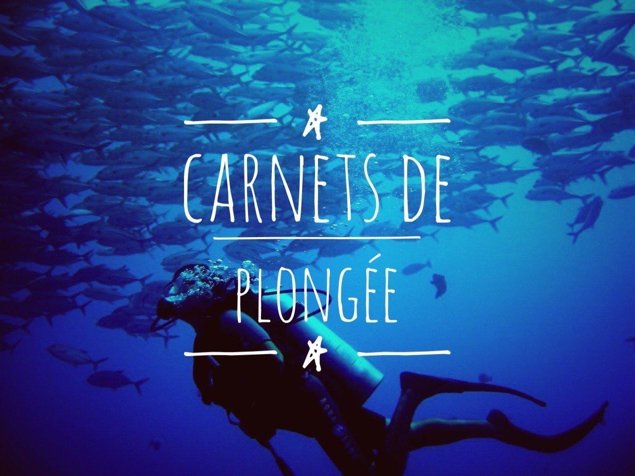 Plongée - Blog Voyage : Carnets du Monde
