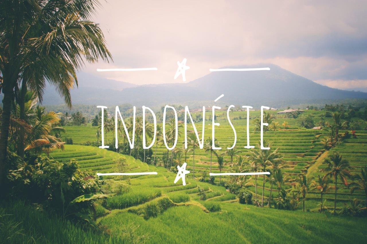 Indonésie - Blog Voyage : Carnets du Monde