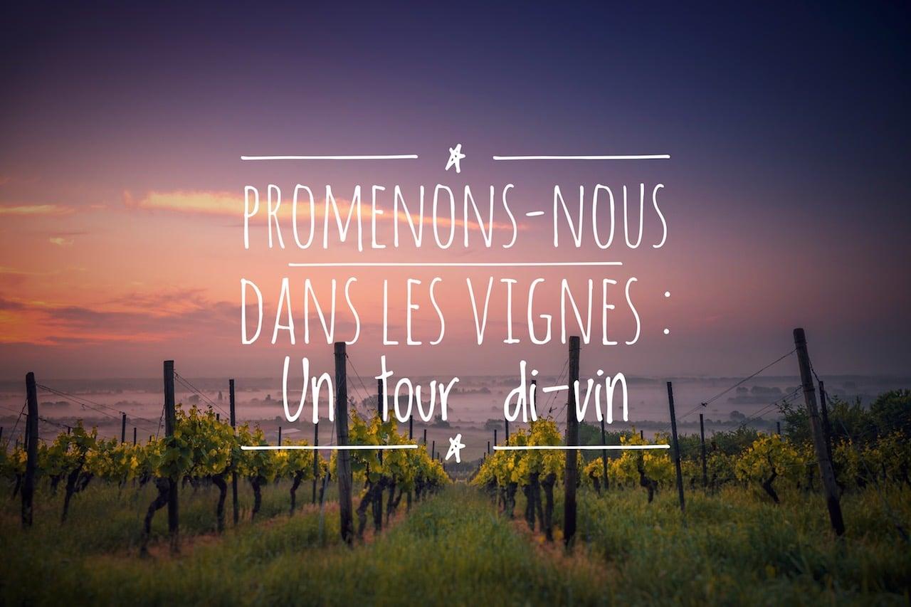 Bordeaux : oenotourisme, promenons nous dans les vignes - Mes carnets du Monde