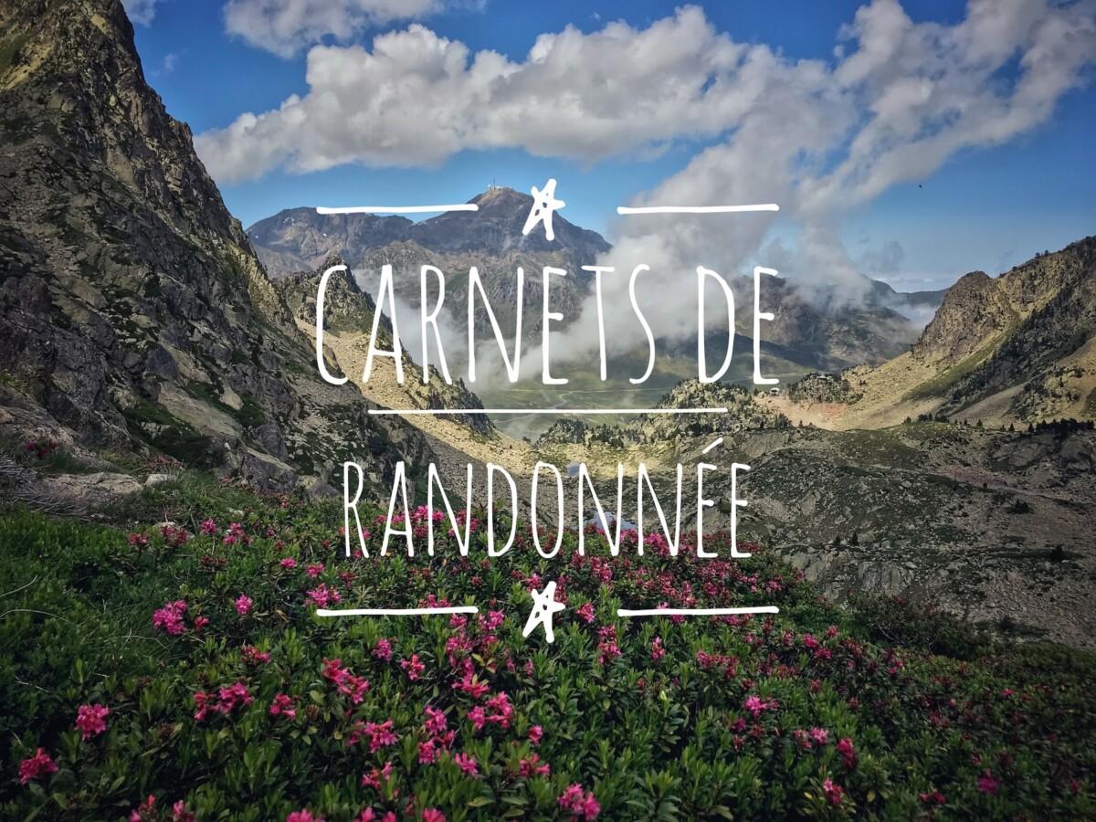 Titre : Carnets de Randonnée - Photo de Montagne, Pic du Midi et Rhododendrons